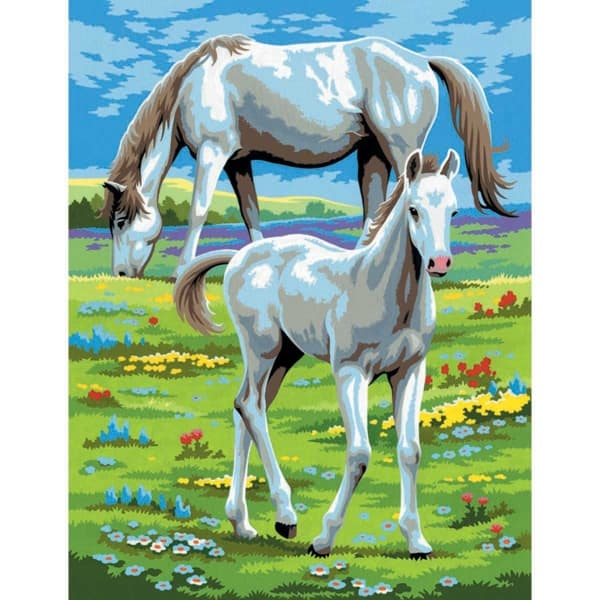 Horses - Medium Paint By Numbers twin pack