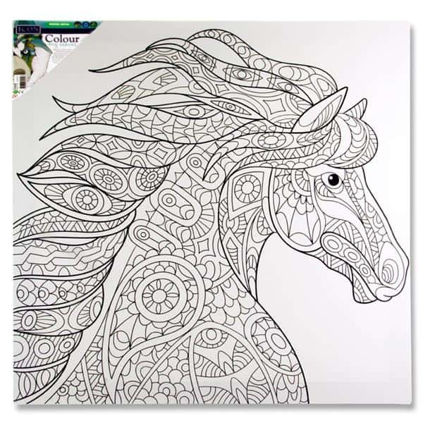 Icon 500x500mm Colour My Canvas - Horse